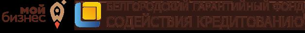 Белгородский гарантийный фонд содействия кредитованию